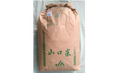 29C-019 鳴滝清流米玄米60kg【30,000pt】