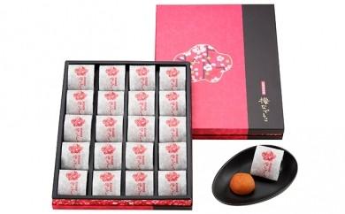 [№5809-0037]紀州南高梅 梅なでしこ 化粧箱20粒入