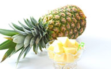 B628 【受付終了】上杉さん家のパイナップル約2kg【470p】