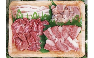 093.鳥取和牛・豚・鶏肉の焼肉セット 500g