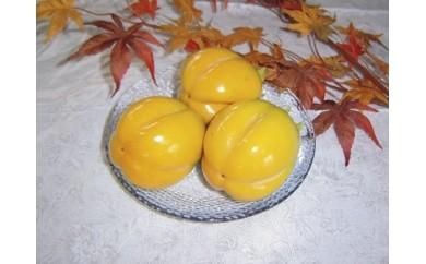 170.西条柿