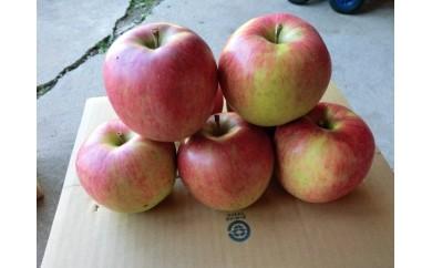 5. リンゴ