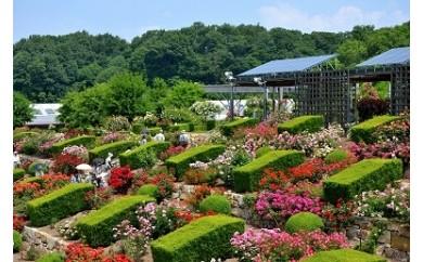 花フェスタ記念公園入園券セット(パスポート1枚・入園券1枚)
