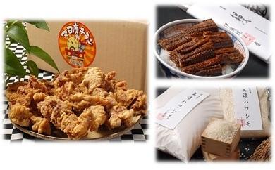 マヨ唐チキンと本格炭焼うなぎ 岐阜米ハツシモ1等米のセット