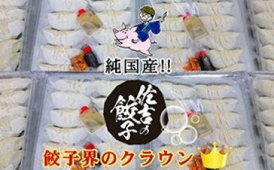 [№5810-0028]佐吉の餃子24個入り×32パック(計768個)