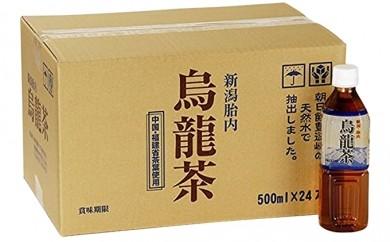[№5769-0114]胎内高原の烏龍茶