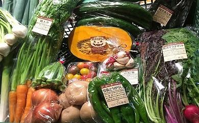 13 ときがわ有機野菜セット