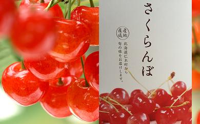 【佐藤錦】松山商店さくらんぼ 特選品Lサイズ以上(7月中旬)