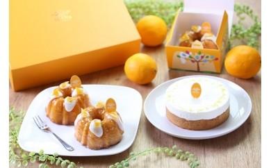 C66  日南産マイヤーレモンの HiNa fruit sweets ギフトセット + ウイークエンド