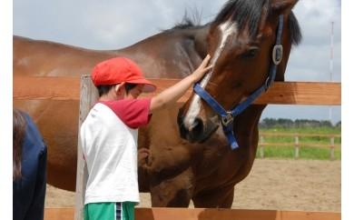 CI-2.ライディングパーク 引き馬体験券