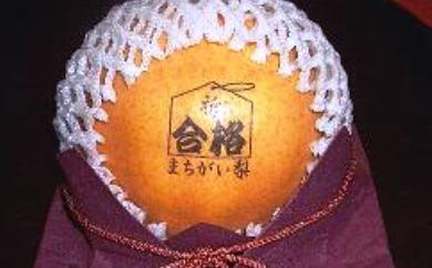 15-MJ-1 合格まちがい梨(大玉)