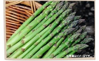【A010-2】細川農園 アスパラガス1.2kg