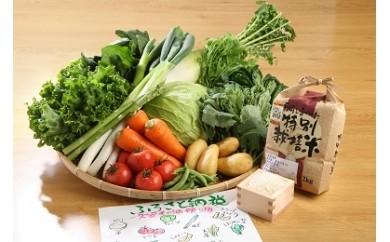 G102 米&野菜セット