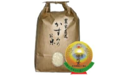20S27 美濃加茂産のお米(20kg)