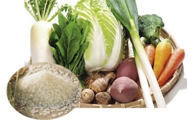 187.新米5kgと季節の野菜セット
