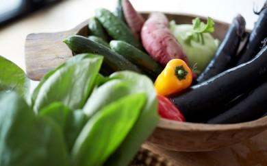 K-1210_綾の美味しいとこどり野菜セット(定期便)