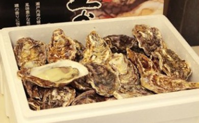 A104 ハマミツ海産 生牡蠣殻付(加熱調理用)