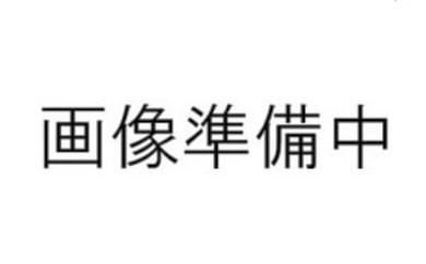【10-13】青谷町産 贈答用 新甘泉(8月下旬~9月下旬発送)