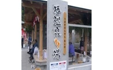 15 椿温泉宿泊割引券(5千円分)