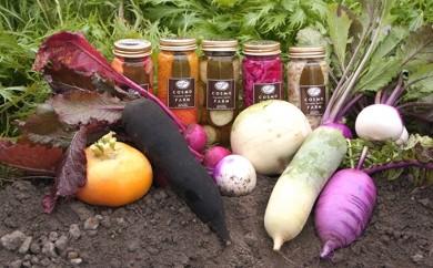 [№4631-0824]ピクルスと季節の野菜セット