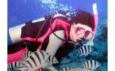 1名様安心安全マンツーマン体験ダイビング1回