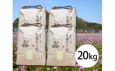 No.012 レンゲ米夢つくし20kg