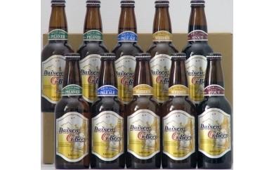 B-86 大山Gビール飲み比べ10本セット