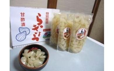 A-46 特別栽培らっきょうの甘酢漬