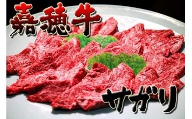 BG01-04  嘉穂牛【サガリ】 数量限定