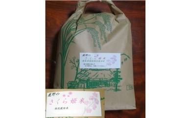 A-33 鹿野のさくら姫米 5kg