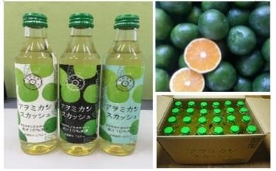 1-009 農家発!新感覚ドリンク アヲミカンスカッシュ