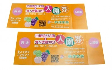 [№5765-0030]観光農園収穫体験チケット(ペア)
