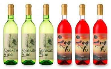 [№5765-0043]是里ワイン 紅白・甘辛6本セット