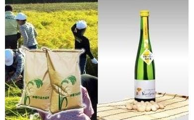B-9 【季節限定】イチョウ花酵母純米酒プリンセスギンコと祖父江のホタル米セット