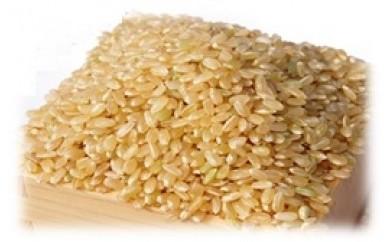 B-1 山香ゆうきの会の米30kg(玄米)