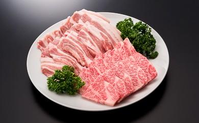 20-[4]【A4ランク以上】山形牛カルビ&山形県産豚バラ焼肉セット(計500g)