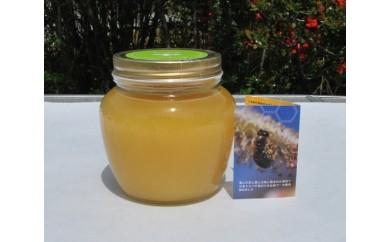 No.048 ミツバチが育む山郷 ニホンミツバチの純粋蜂蜜 690gセット