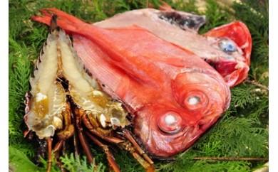 [3005206]伊豆漁協直送「地キンメ、特大イセエビ干物セット」