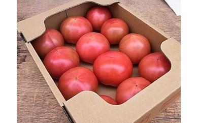 H-10 揖保川トマト ※2キロ