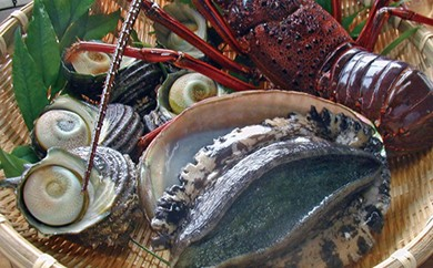 G703 『天然ものは、最高級のステータス!』天然活魚おまかせセット【180p】