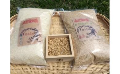 [Ha-01]湯の花 精米したてのお米5kg1年分