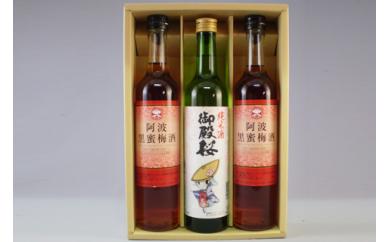 A021 【阿波の酒 御殿桜】純米酒トクシィ&阿波黒蜜梅酒(2本) 500ml詰合せ
