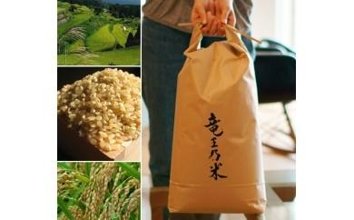 K20-2 【竜王乃米-玄米】有田の棚田で採れた お米(ひのひかり)