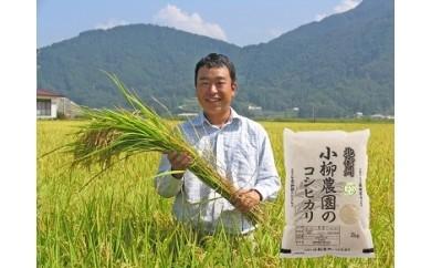 I-079 小柳農園の特別栽培米コシヒカリ 6kg