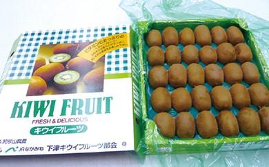 A005 キウイフルーツ【20p】