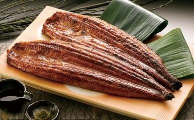 [№5809-0120]鰻の蒲焼