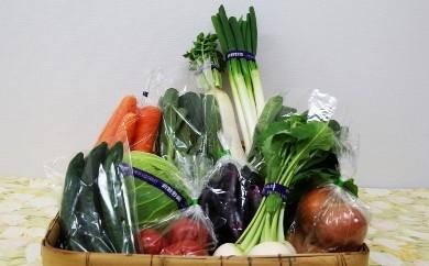 4季節の野菜セット