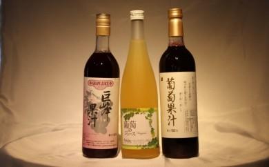 B-704.葡萄果汁厳選セット