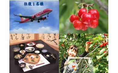 C-54 FDAで行く東根の旅 日帰り体験ツアー 往復1名様・東根の名店昼食と温室さくらんぼ狩り(タクシーチケット付)