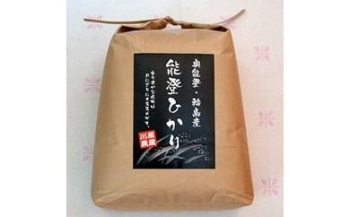 【新米】【輪島のお米】能登ひかり5kg(精米)